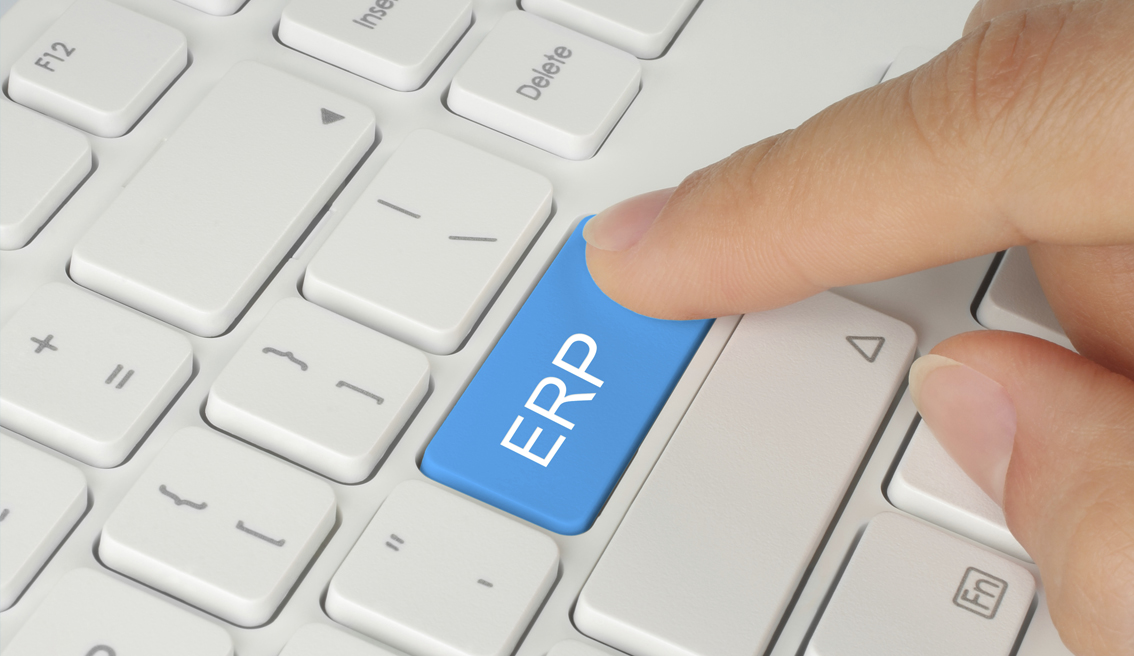 Programa ERP